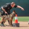 Desert Dog Trials 2016 -159