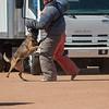 Desert Dog Trials 2016 -157