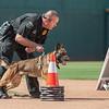Desert Dog Trials 2016 -162