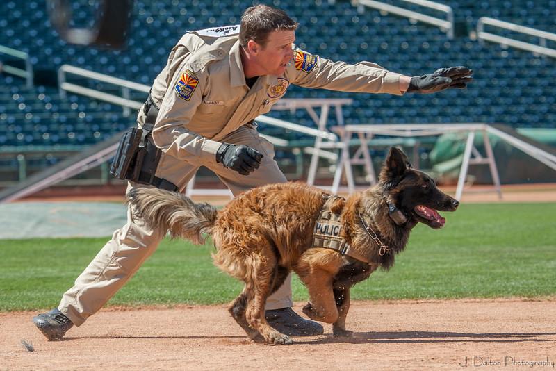 Desert Dog Trials 2016 -139