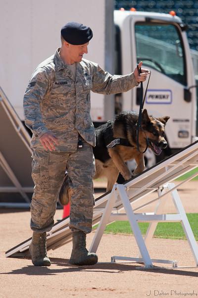 Desert Dog Trials 2016 -81