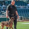 Desert Dog Trials 2016 -146