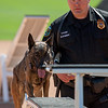 Desert Dog Trials 2016 -57