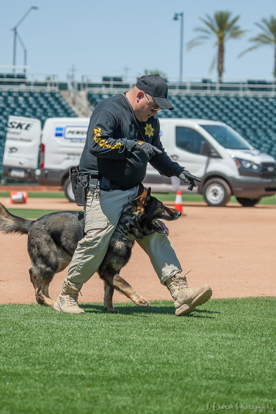 Desert Dog Trials 2016 -91