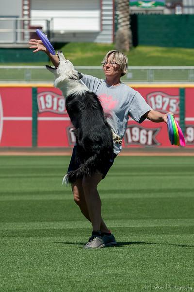 Desert Dog Trials 2016 -112