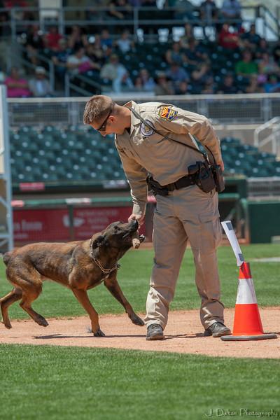 Desert Dog Trials 2016 -99