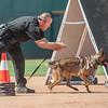 Desert Dog Trials 2016 -163
