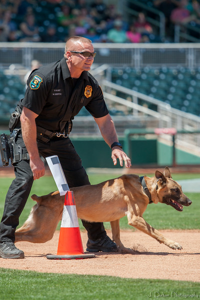 Desert Dog Trials 2016 -105