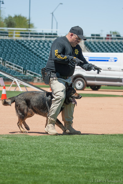 Desert Dog Trials 2016 -90