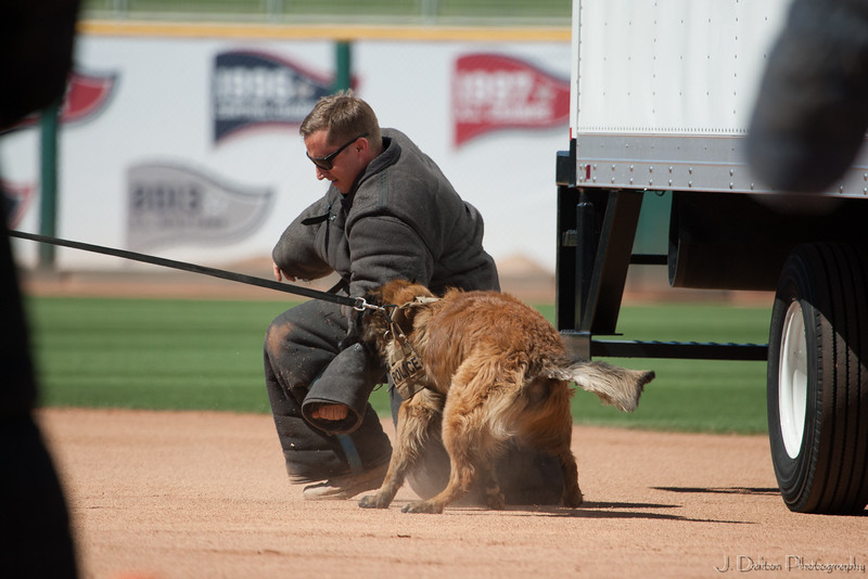 Desert Dog Trials 2016 -142