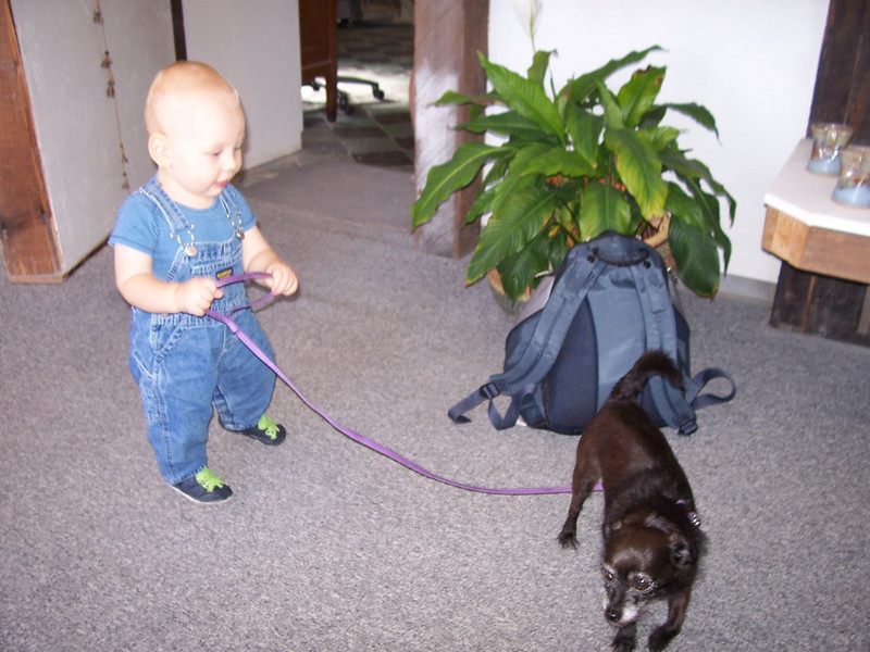 Is Sam walking the dog or is the dog walking him?