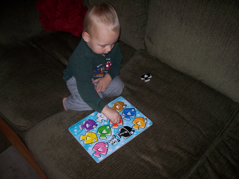 Sam loves his fish puzzle