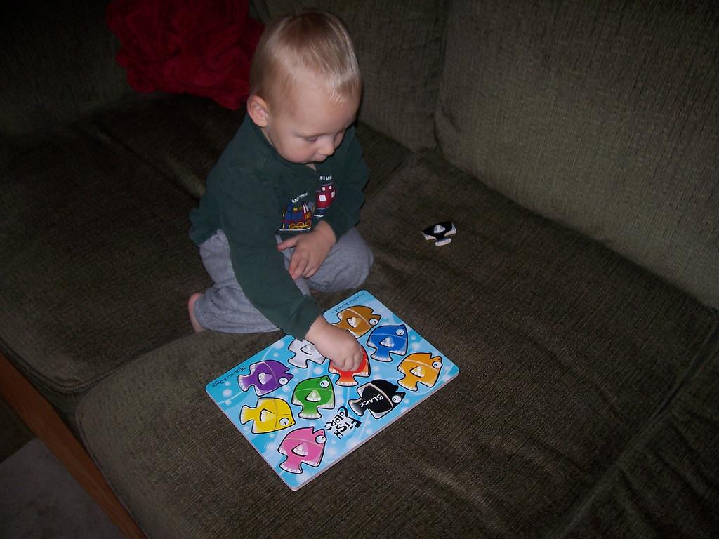 Sam loves his fish puzzle