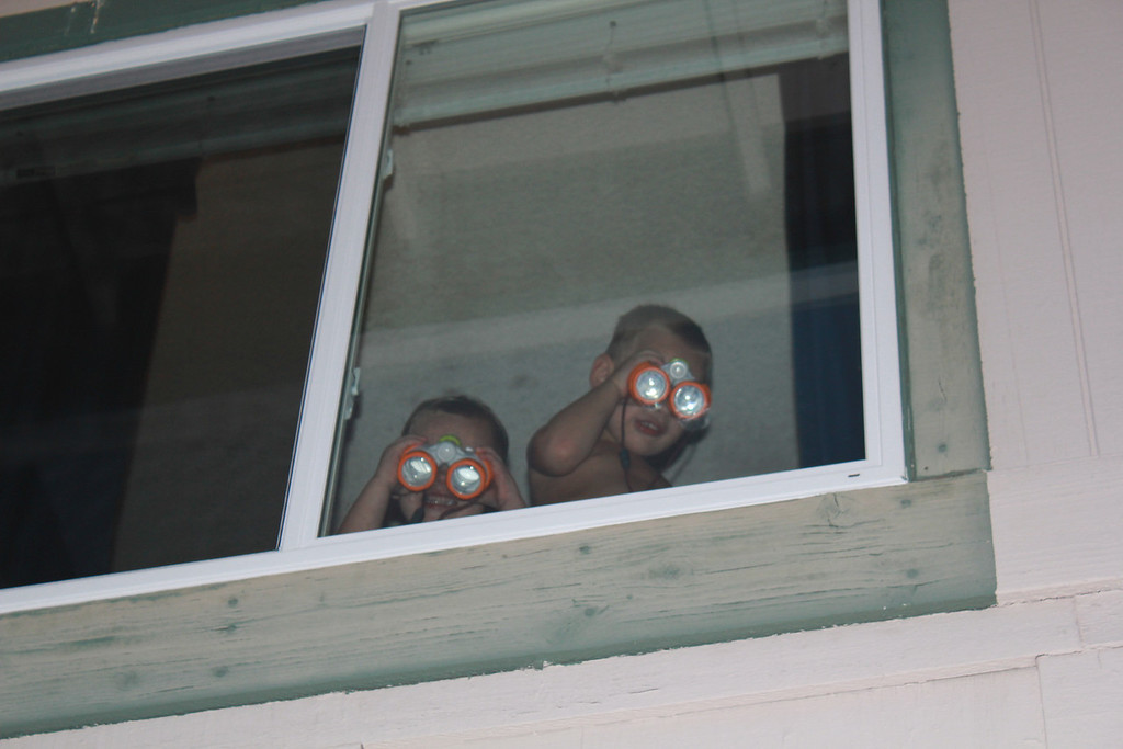 My two peeping Toms