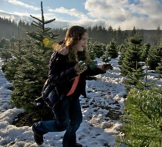 Christmas Tree Farm 2010