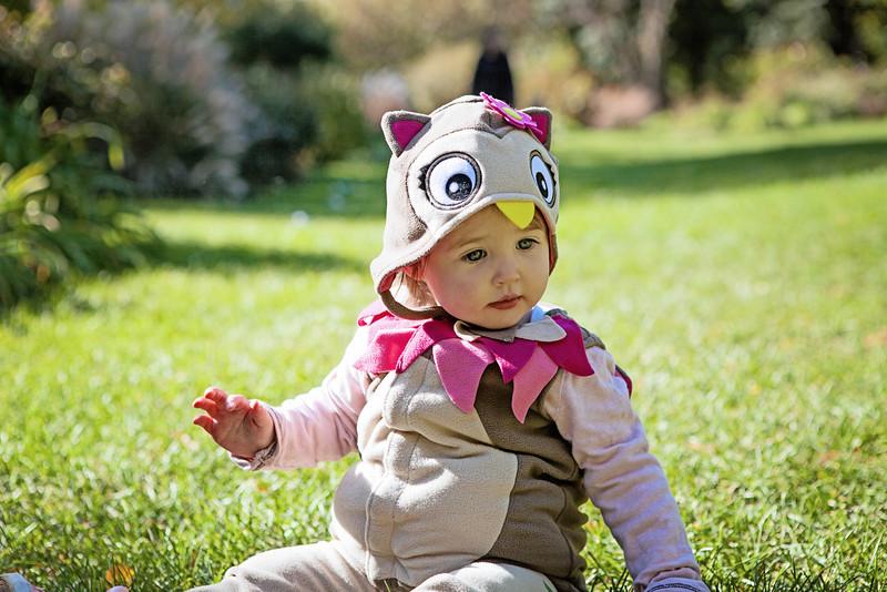 Daylin-Halloween_131027_240-1