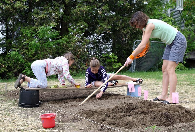 Planting veggetables.