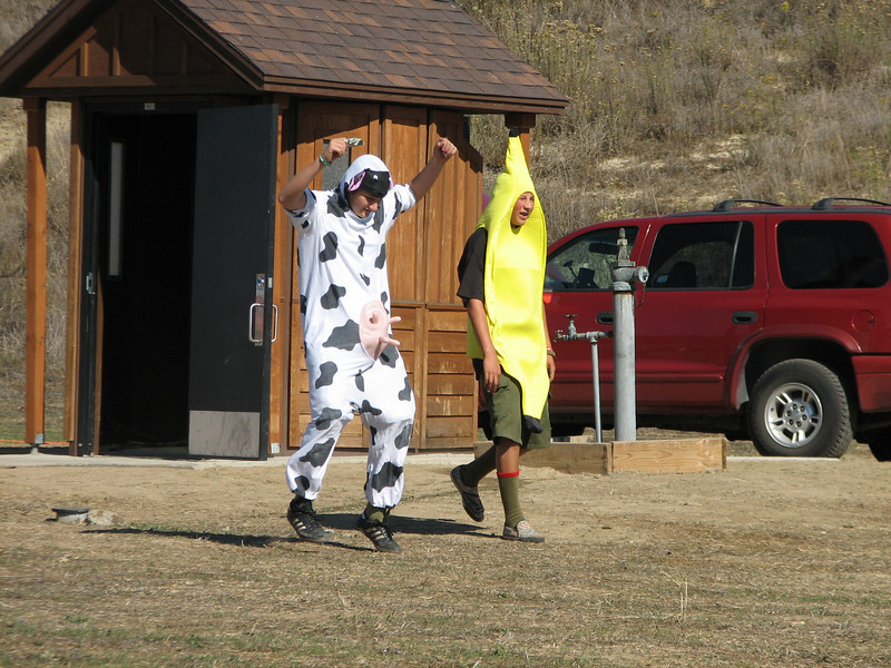 The cow and banana. Don't ask.