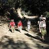 Heading down the fire road. L-R: Brian, Lynne, Chris, and Matt.