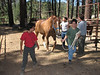 Monday - Horsemanship. John and Anthony lead their horse out of its stall.