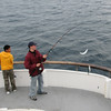 John H lands 2 mackerel at once!