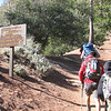 9:02 -- Starting up the Pacific Crest Trail. The sign says:<br /> MT BADEN-POWELL        3.7<br /> WINDY GAP                      9.4<br /> LITTLE JIMMY TRL CMP   9.7<br /> ISLIP SADDLE TRLHD     11.3