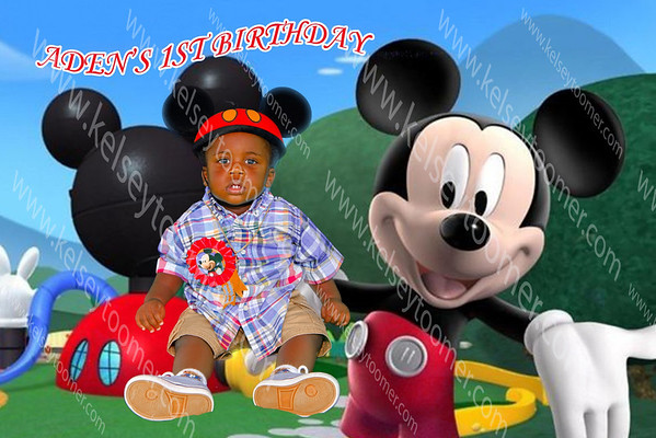 Aden's 1st Mickey Mouse Birthday Party