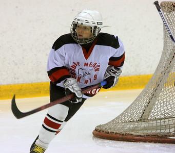Белые Медведи-2000 (Челябинск) - Югра-2000 (Ханты-Мансийск) 4:1. 6 ноября 2011