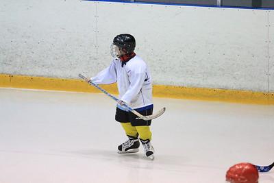 Амур (Хабаровск) - Тимерхан (Татарстан) 11:2. 24 декабря 2013