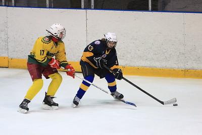 В Челябинске прошел четвертый игровой день новогоднего турнира по хоккею среди девочек 2000-2002 года рождения Снегурочка
