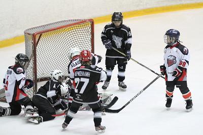 Школа Макарова-2004 (Челябинск) - Белые Медведи-2004 (Челябинск) 9:2. 3 февраля 2013