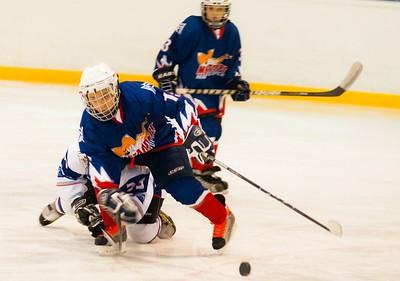 Металлург-2000 (Магнитогорск) - Южный Урал-2000 (Орск) 3:0. 17 ноября 2012