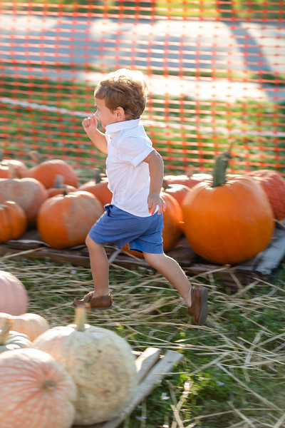 Pumpkins-October2019-44