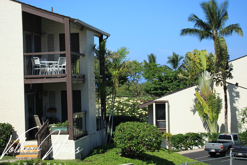 """Kihei Condos including the Hale Kamaole Condos in Kihei are viewed best at   <a href=""""http://www.VWonMaui.com"""">http://www.VWonMaui.com</a>"""