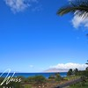 "<a href=""http://www.vwonmaui.com/maui-kamaole"">Maui Kamaole</a> G210 in <a href=""http://www.vwonmaui.com/kihei-real-estate"">Kihei</a>, Maui, Hawaii. Research all <a href=""http://www.vwonmaui.com/kihei-condos"">Kihei Condos</a> for sale, including <a href=""http://www.vwonmaui.com/maui-kamaole"">Maui Kamaole</a> in South Maui, by visiting the superior website of <a href=""http://www.vwonmaui.com"">VWonMaui</a>, a partner of the famous <a href=""http://www.1MauiRealEstate.com"">1MauiRealEstate.com</a> project."