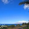 "<a href=""http://www.vwonmaui.com/maui-kamaole"">Maui Kamaole</a> G210 in <a href=""http://www.vwonmaui.com/kihei-real-estate"">Kihei</a>, Maui, Hawaii. Research all <a href=""http://www.vwonmaui.com/kihei-condos"">Kihei Condos</a> for sale, including <a href=""http://www.vwonmaui.com/maui-kamaole"">Maui Kamaole</a> in South Maui, by visiting the superior website of <a href=""http://www.vwonmaui.com"">VWonMaui</a>, a partner of the famous <a href=""http://www.1MauiRealEstate.com"">1MauiRealEstate.com</a> project."