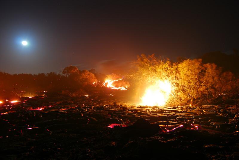 #KIL2010-23
