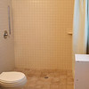 Bathroom w/ Roll-In Shower