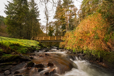 17th March 2021: Picture of Bridge at Glanagear Woods, Killavullen, Co. Cork. Photo by Sean Jefferies Photography.