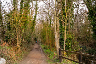 17th March 2021: Picture of The Railway Walk, Killavullen, Co. Cork. Photo by Sean Jefferies Photography.