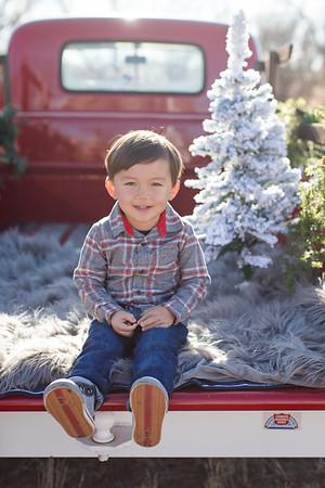 Kim Christmas Mini-1