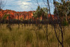 Lever de lune sur les formations rocheuses de Purnululu (Bungle Bungle). Kimberley/Australie Occidentale/Australie