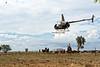 """Rassemblement du bétail à l'aide d'hélicoptères pendant le mustering sur les terres de """"Meda Station"""". Kimberley/Australie Occidentale/Australie"""