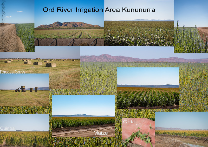Ord River Irrigation Area