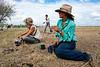 """Moment de pause pour trois jillaroos (cow-girls australiennes) participant au déplacement d'un troupeau en période de mustering sur les terres de """"Meda Station"""". Kimberley/Australie Occidentale/Australie"""