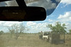 """Une jillaroo (cow-girl australienne) surveillant la progression d'un troupeau en déplacement pendant le mustering sur les terres de """"Meda Station"""". Kimberley/Australie Occidentale/Australie"""
