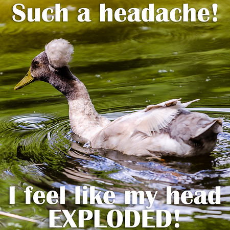 Such a headache! I feel like my head EXPLODED!