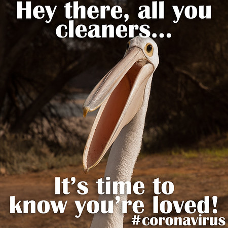 Hey there, all you cleaners... It's time to know you're loved!