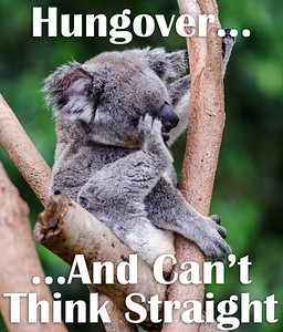 Hungover... And Can't Think Straight