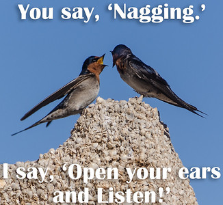 You say, 'Nagging.'  I say, 'Open your Ears and Listen!'